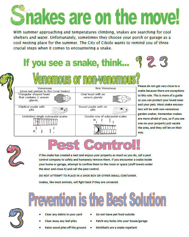 Infographic Showing Tips for Snake Encounters